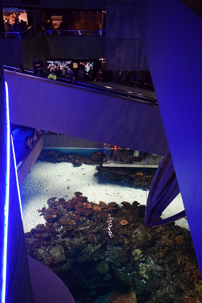 National Aquarium aqua.org