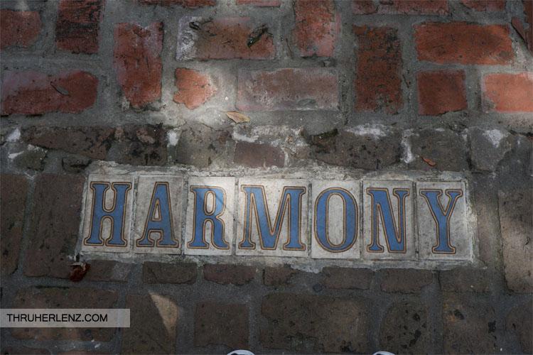 Harmony Street Garden District