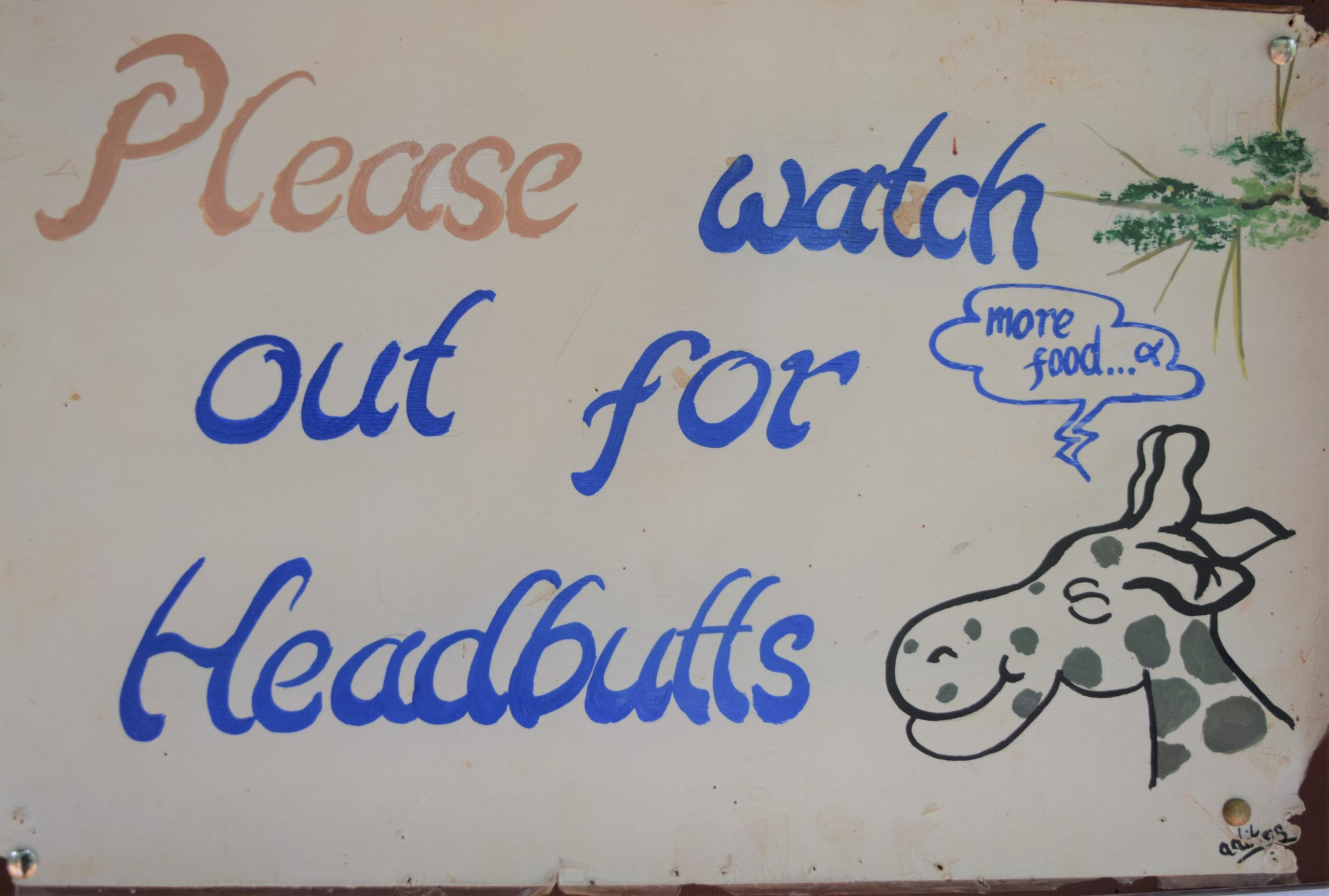 "Sign that has Giraffe and words ""Please watch out for headbutts"""